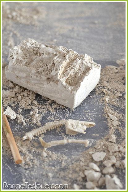 fossile-dinosaure-maison
